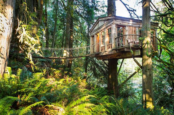 Treehouse Point is pure luxe all the way.