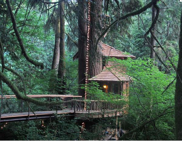 There are four different tree houses set in the middle of a forest at Treehouse Point.